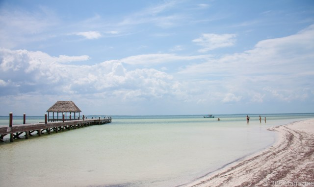 Everything you need to know about Isla Holbox in Mexico