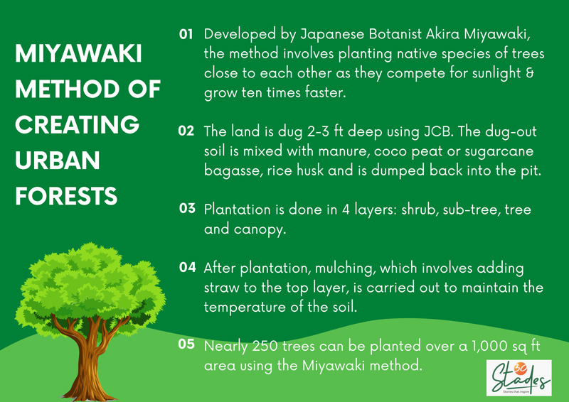 An example from city beautiful of india. How Thuvakkam Is Creating Urban Forests In Tamil Nadu