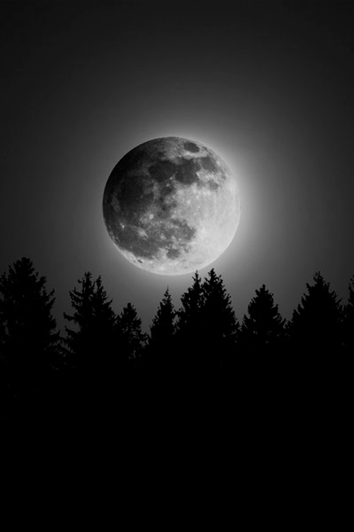 THE MOON HAS ITS OWN UNIQUE BEAUTY.<br /> IT COMES OUT AT NIGHT TO REPLACE THE SUN.<br /> ITS WHITE GLOW SHINES UPON US ALL.<br /> WITHOUT THE MOON, THE NIGHT WOULD BE<br /> DARKER AND SCARIER.<br /> THANK YOU MOON.