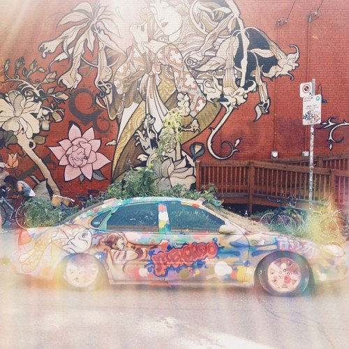 Find Momo at this car that has plants growing out of it.  (at Romeo's Juice Bar)
