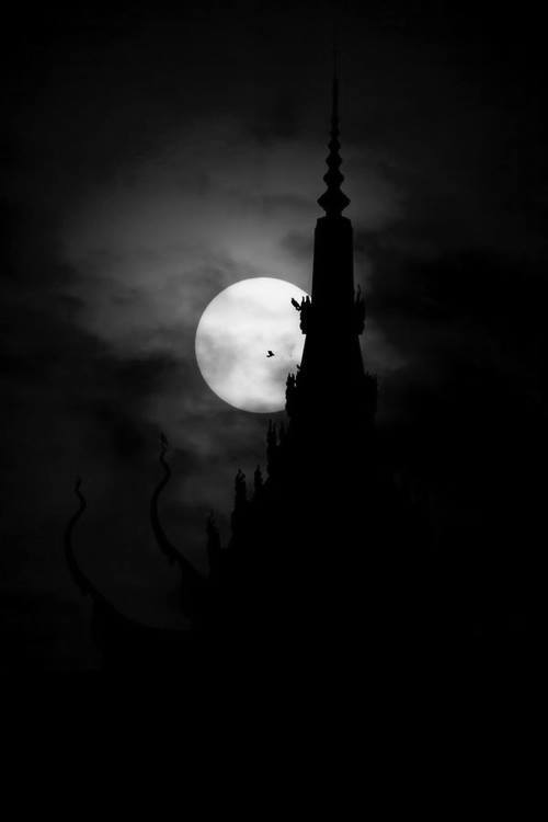 THE FULL MOON  WITH A FULL MOON,  COMES EVIL IN ITS  MANY FORMS.