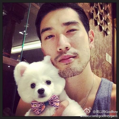 Godfrey Gao with puppy Theo