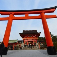 Super Cool Kyoto: Fushimi Inari Shrine and Secret Cats!