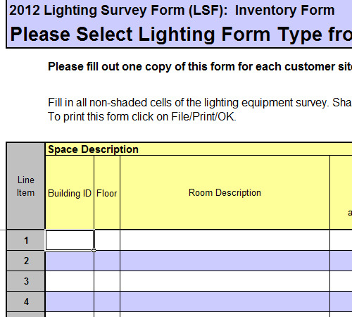 Lighting Survey Example Template