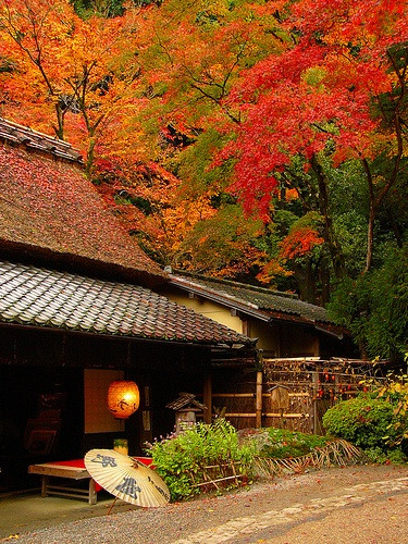 raben-schwarz:Toriimoto, Kyoto. on We Heart It - http://weheartit.com/entry/65978044