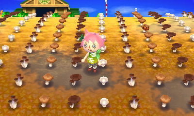 ACNL Help Goodies Blog A Guide To Super Harvesting
