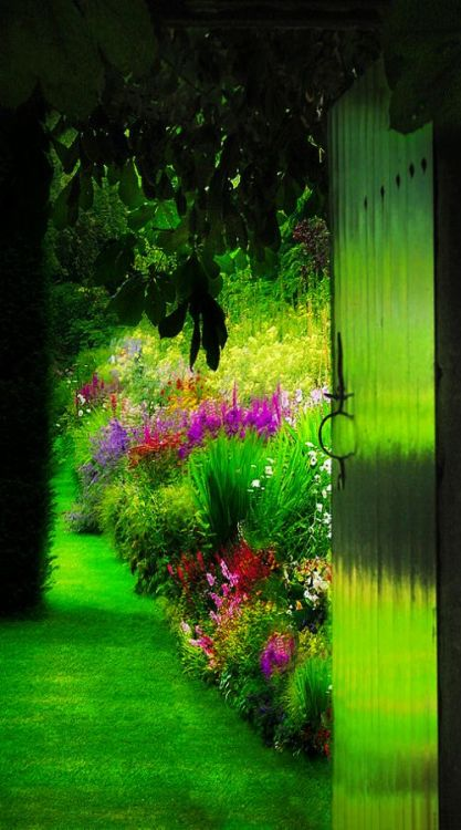 flowersgardenlove:<br /> A closed door,<br /> it can open to many things.<br /> It can lead you into a garden of flowers.<br /> It can also lead you to darkness and<br /> unspeakable horrors.<br /> What are you in the mood for?<br /> Do you want pretty flowers?<br /> Or do you want to explore the unknown.<br /> The choice is yours.<br /> THE DEAD GAME by Susanne Leist<br /> http://www.amazon.com/author/susanneleist<br /> http://www.outskirtspress.com/thedeadgame