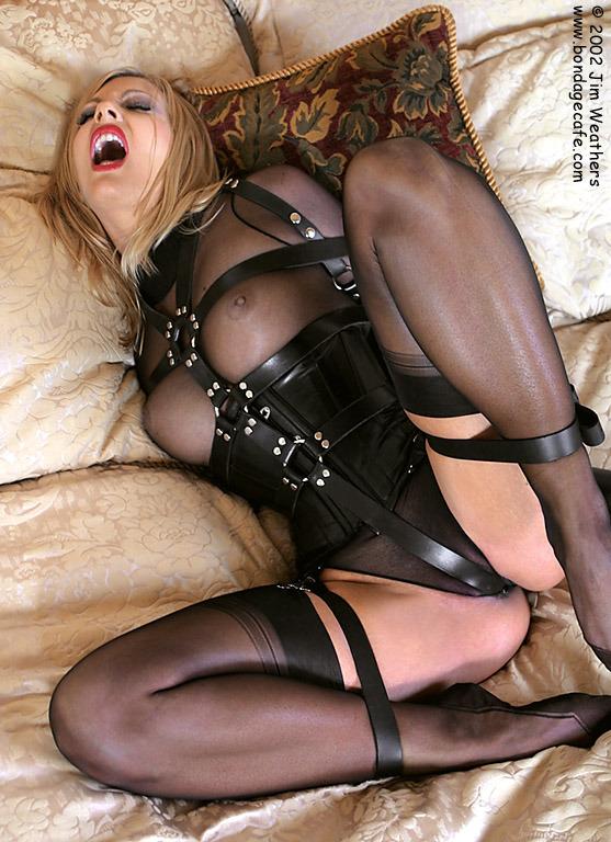 tumblr extreme corset