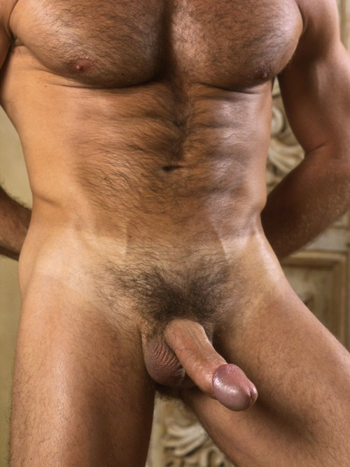 naked handsome tumblr Gay hunk