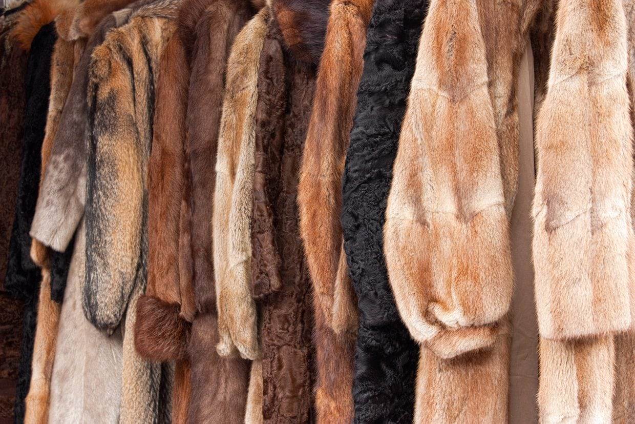 Fur Faces Opposition in Chinese Fashion Industry   Jing Daily Fur Faces Opposition in Chinese Fashion Industry