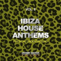VA - Ibiza House Anthems, Vol. 8 (Physical Underground) [Noisy Darts Records]