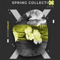VA - Spring Collection. 2019 [Oxytech Records]