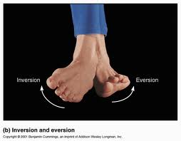 inversion-ankle-injuries