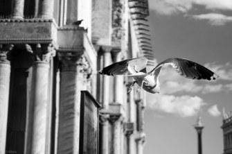 Venedig-17