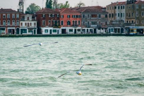Venedig-30