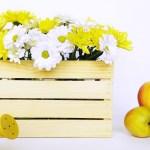 Drewniana skrzynka ozdobna – zrób to sam