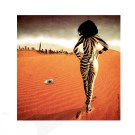 Title : A zebra looking at America PsCs  6 by : danIzvernariu ©2013 ʘ 6014