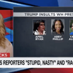 Brooke Baldwin Calls Out Trump's Racist Attacks Against Black Journalists