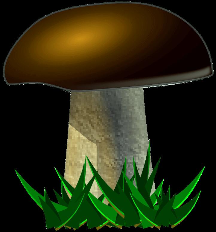 Картинка для детей грибочек