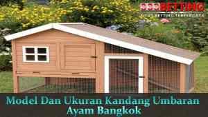 Model-kandang-Umbaran-Ayam-Bangkok-Aduan
