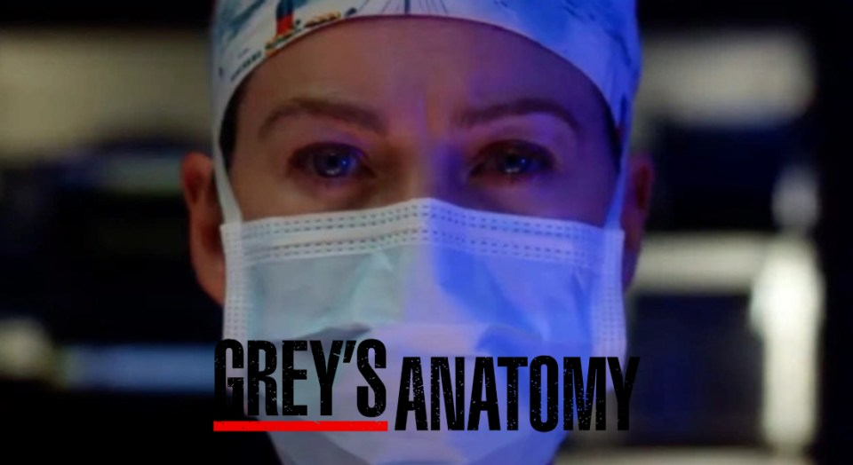 Grey's Anatomy pandemia