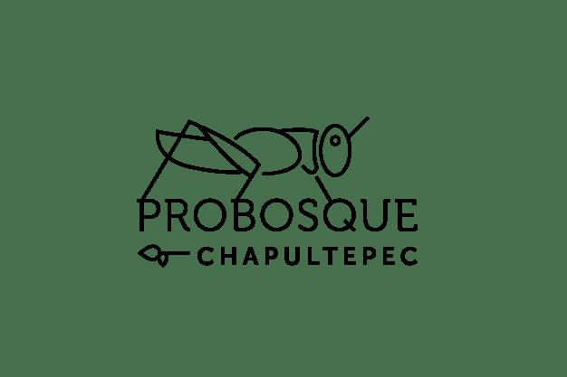 Probosque Chapultepec