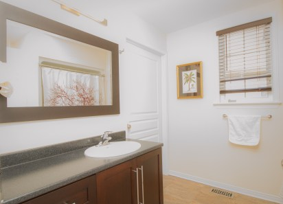 Full bathroom with wheelchair accessible shower