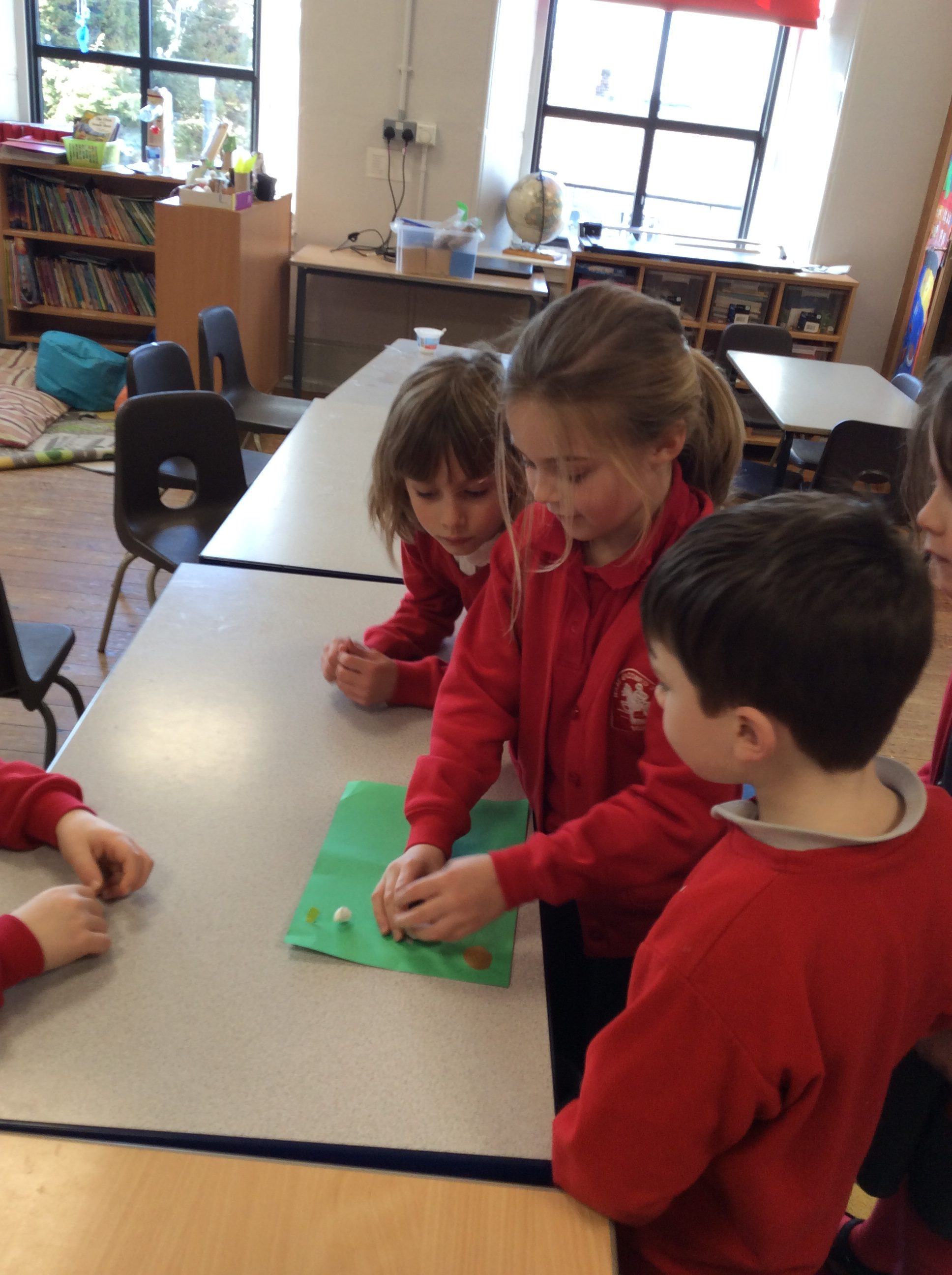 Seed Dispersal Wray With Botton Endowed Primary School