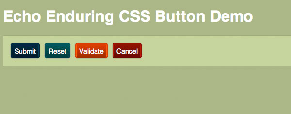 Echo Enduring CSS Button