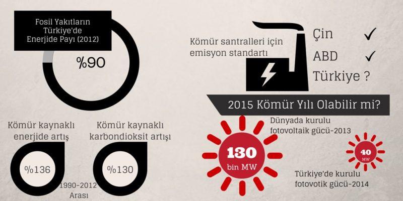 2015 Komur Yili