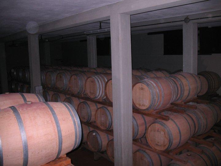 Storage barrels for Chianti Classico