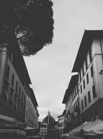 WANDERER 001 |  Florence