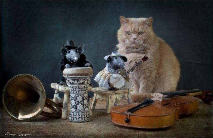Элеонора Григорьева. Живые кошки и игрушечные мышки