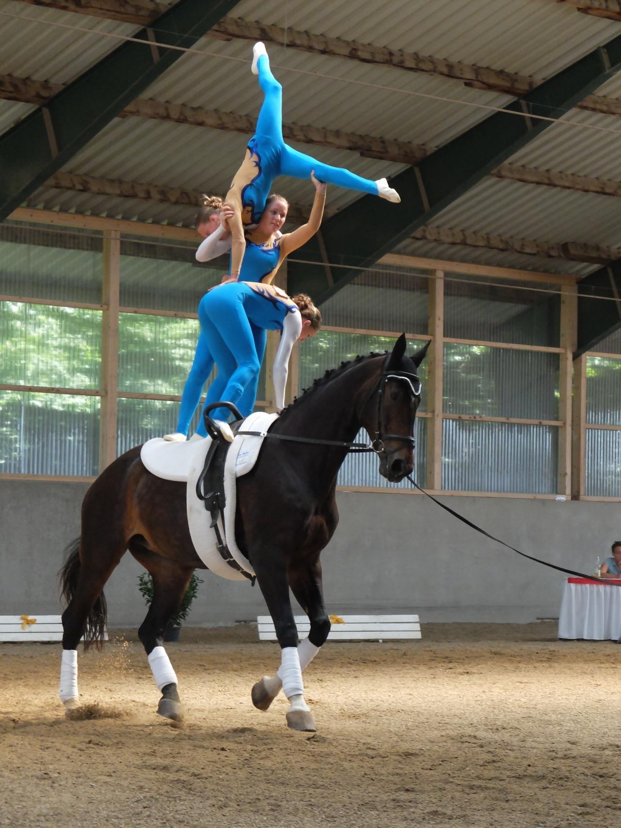 mangia minga - gymnastics on horseback, team RVC Gilching 2
