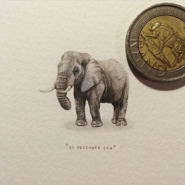 Day 359: African Elephant   Loxodonto africana. 🐘 (remember the days when the Boswell-Wilkie circus would come to town over Christmas time?) 25 x 29mm. #365postcardsforants #wdc624 #miniature #watercolour #elephant #painting #christmas #circus Disclaimer: this does not mean I endorse the use (and abuse) of animals in circuses AT ALL.