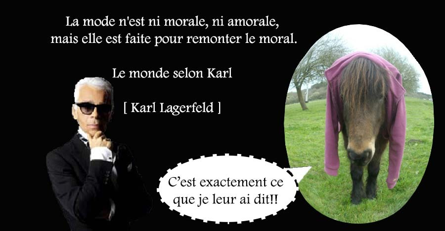 Citation, Karl Lagerfeld, Equitation