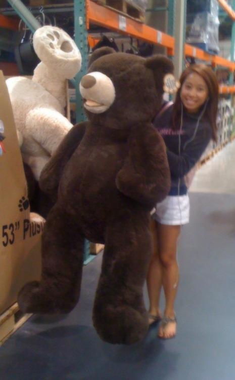 Huge Teddy Bear On Tumblr