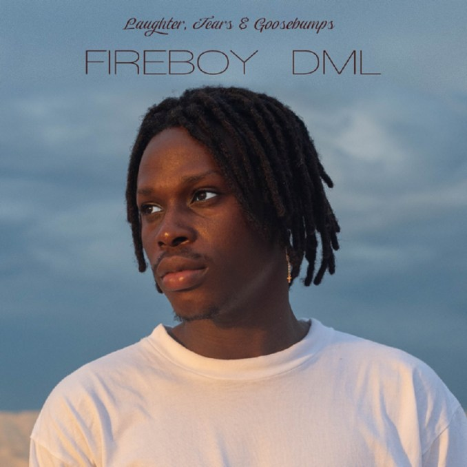 Download Fireboy DML – Vibration Mp3
