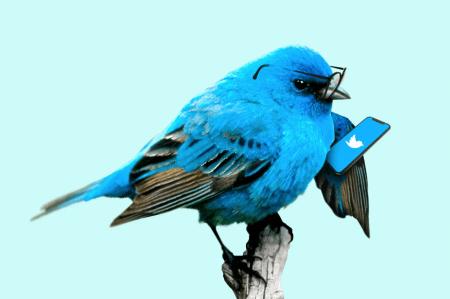 Twitter CSAT