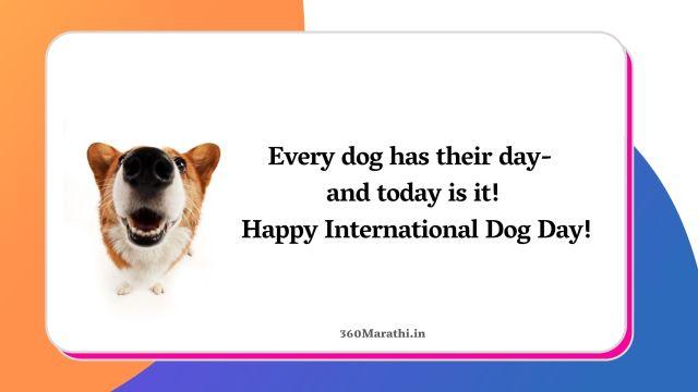 International Dog Day Quotes Wishes Images in Marathi Hindi & English