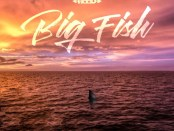 Download Ace Hood Big Fish Mp3 Download