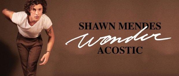 Download Shawn Mendes Wonder Acoustic MP3 Download