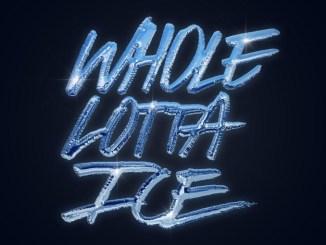 BigWalkDog – Whole Lotta Ice Ft. Lil Baby & Pooh Shiesty