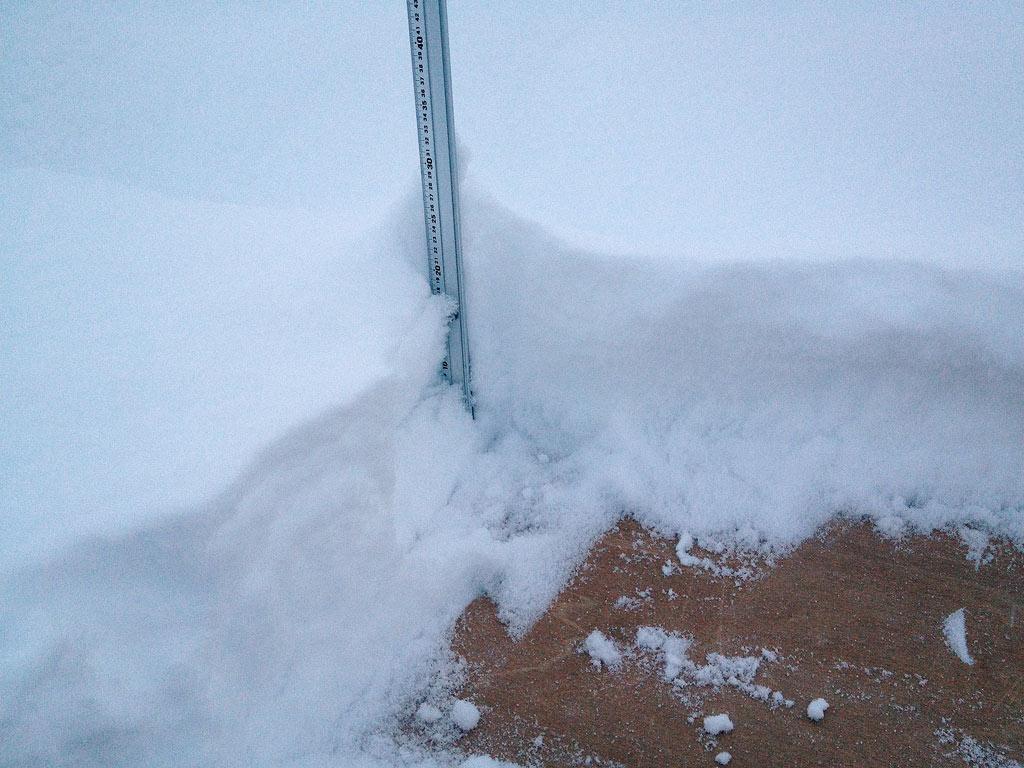 Snow station, 17 January 2013