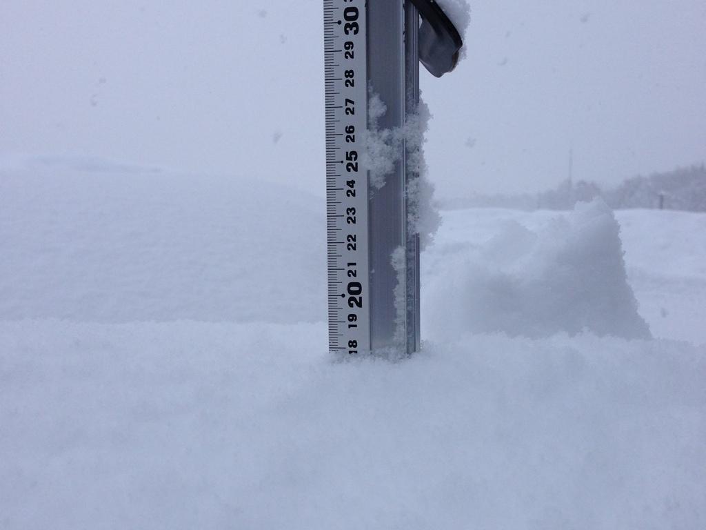 snowfall 2013-02-22