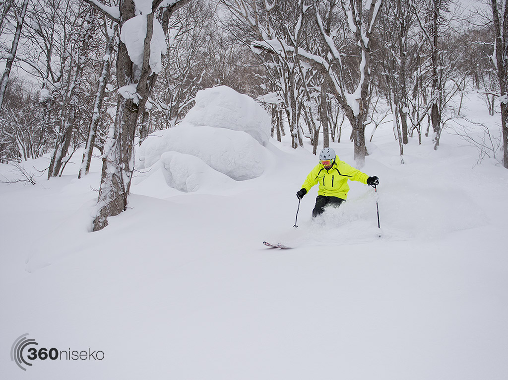 Tree skiing in Hanazono, 14 February 2015