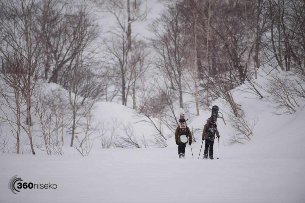 Joel and Will take a walk, 15 February 2017