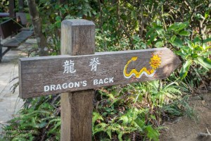Dragon's Back trail sign