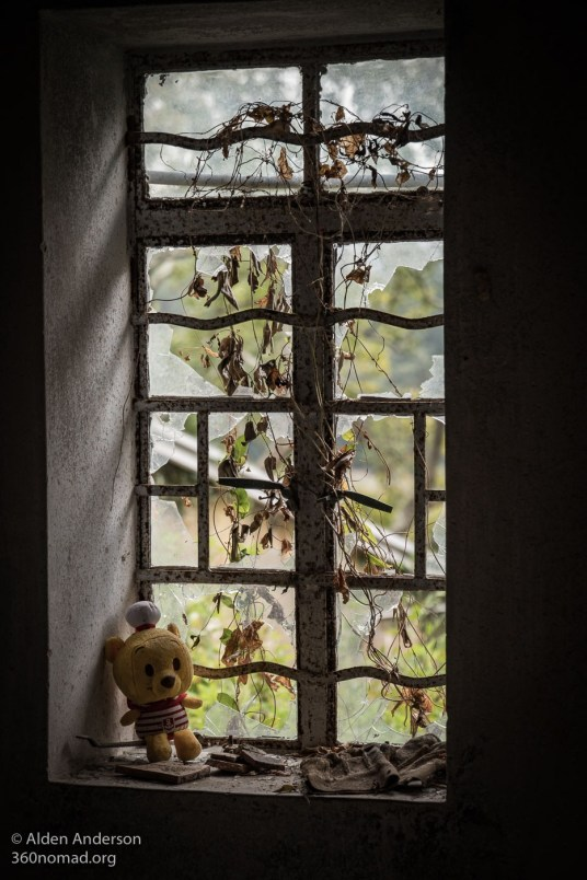 Pooh in the window