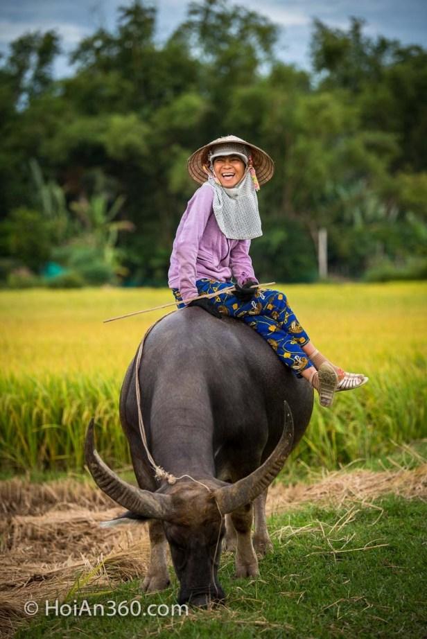 Han and her Buffalo, Hoi An